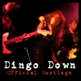 3 Official Live Digital Dingo Download Bootlegs